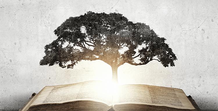 7 knygos, iš kurių verta pasisemti išminties