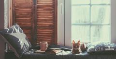5 knygos, kurios padės atrasti ramybę