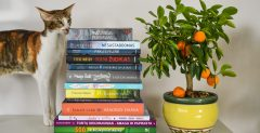 Paskutinės rugsėjo savaitės knygų naujienos, kurias verta perskaityti šį rudenį